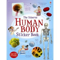 Information Sticker Books: Human Body Sticker Book