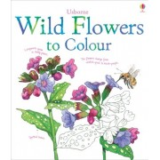 Nature colouring books: Wild Flowers to Colour