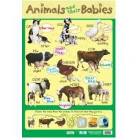 Animals & Babies Wall Chart